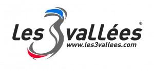 logo_6951
